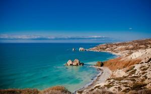 Cyprus rots
