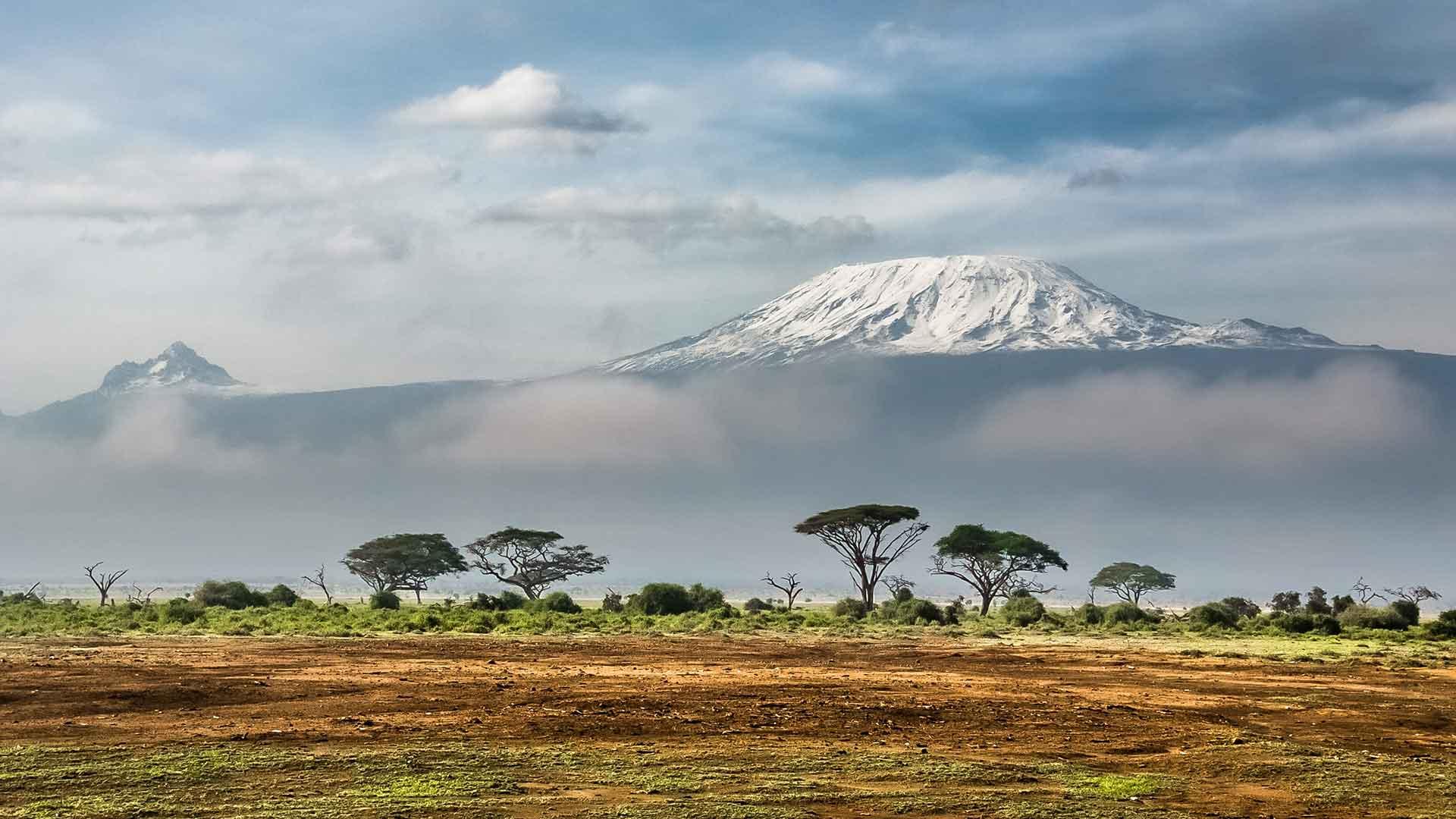 Afrika Uitgelicht
