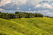 Top 5 Toscane