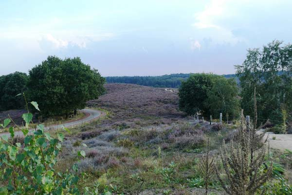 Landschap Posbank