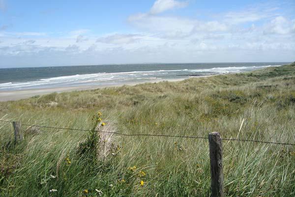 Duinen op Vlieland